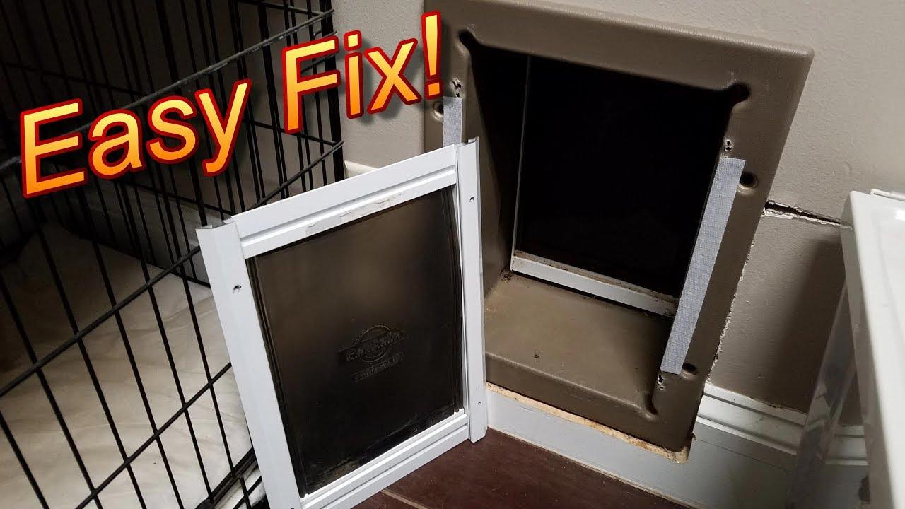 dp pet door insert cat com window with amazon flap doors supplies