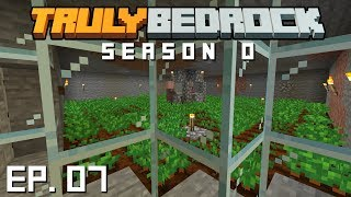 Truly Bedrock S0E7 Automatic crop farm and starting the oasis.