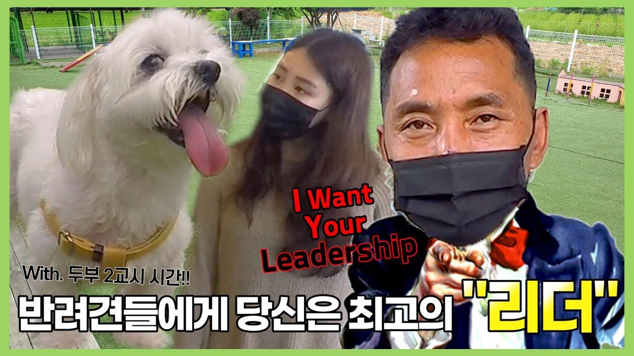 [ENG Sub] 여러분들은 반려견들에게 'Boss' 인가요 'Leader' 인가요? [이삭TV]