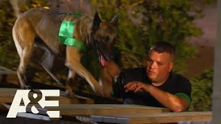 Live PD K9s & Handlers RACE Through Obstacle Course | America's Top Dog (Season 1) | A&E