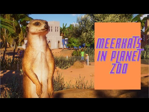 Planet Zoo Africa Pack Part 1 (Timed Challenge) |