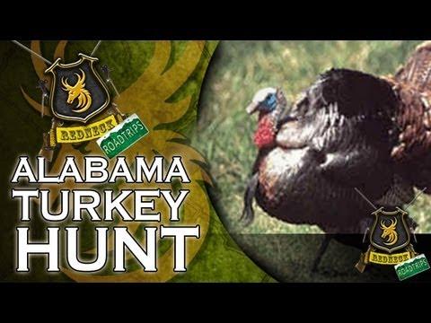 Alabama Turkey Hunt