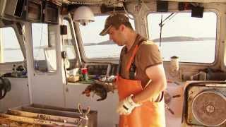 Fish and Aquaculture -  America's Heartland: Episode 914
