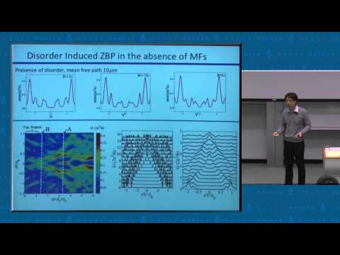 IAS Asia Pacific Workshop on Condensed Matter Physics : Prof Kam Tuen Law (16 Dec 2012)