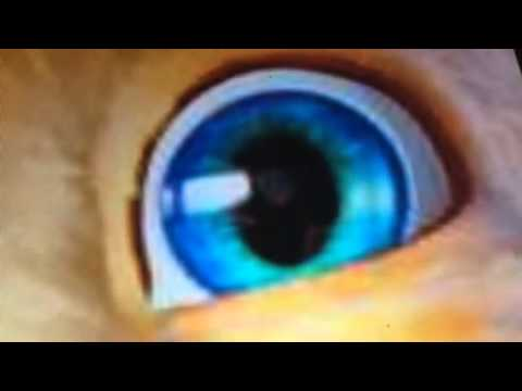 Is talking ginger hacked - YouTube