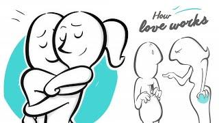 видео Сколько живет любовь?