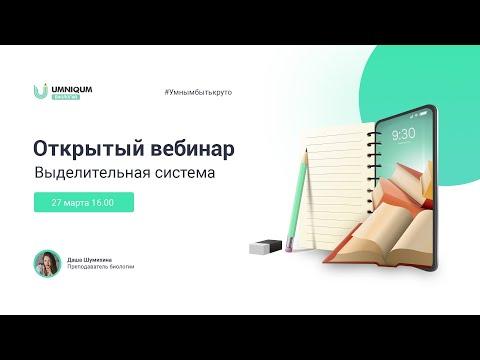 Выделительная система | УМНИКУМ | UMNIQUM