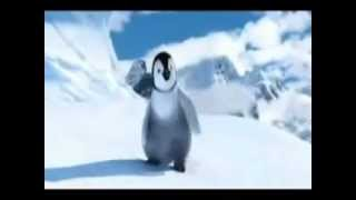 Funny! Happy Birthday Song oriental penguin