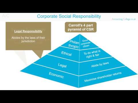 Corporate Social Responsibility - ACCA P1-  Revision Theory