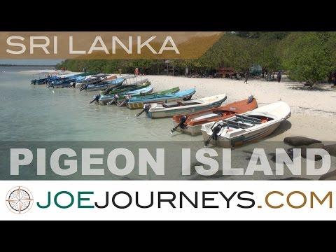 Pigeon Island - Sri Lanka  | Joe Journeys