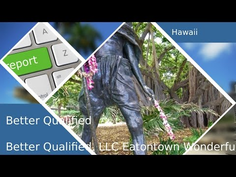 All About|Better Qualified|Hawaii|Bq Five Star Review By Brian J.