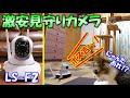 激安機種のペット見守りカメラ【LS-F2】をボス吉部屋でテスト起動!しっかり見れてコスパ最高!?
