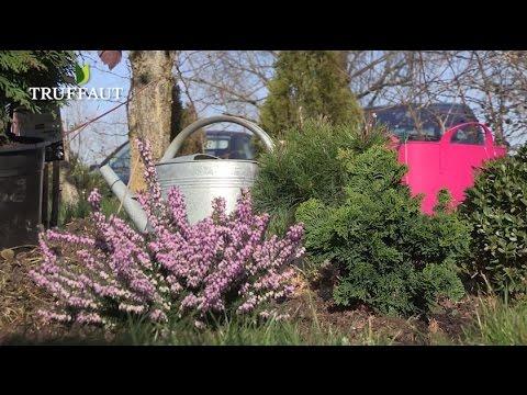 quels conif res nains planter dans une rocaille jardinerie truffaut tv youtube. Black Bedroom Furniture Sets. Home Design Ideas