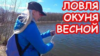 Ловля окуня на спиннинг весной Приманки на окуня Рыбалка 2020