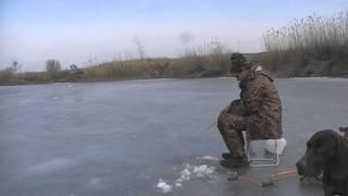 Зимняя рыбалка в Волгоградской области 07.03.2015.