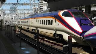 北陸・東北をめざす新幹線たち E2・E3・E4・E5・E6 ・W7 JR東日本 東京駅  8分間の記録 2018 3