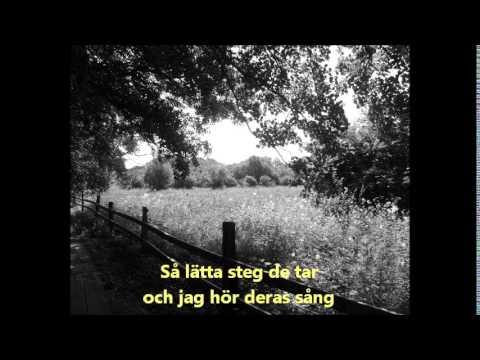 Eyra - Sången till dig + lyrics