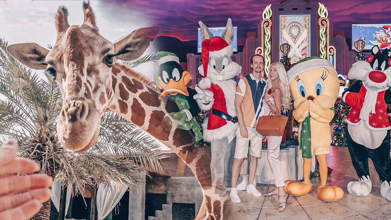 Отель с Жирафами / Парк Warner Bros. World Abu Dhabi / Дубай 2020