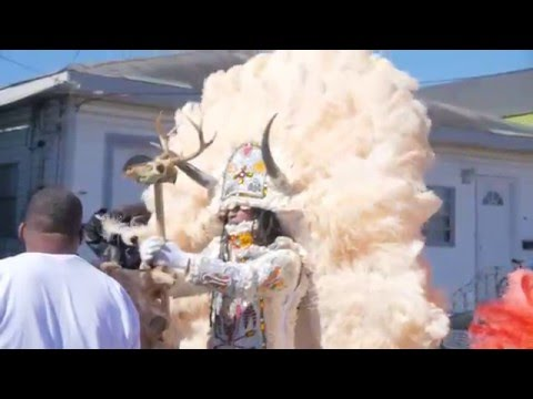 New Orleans Live: Mardi Gras Indians 2016