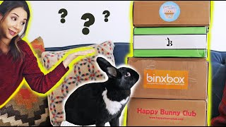 COMPARING ALL THE BUNNY SUBSCRIPTION BOXES! 😱