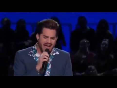 Adam Lambert -- Elvis Presley NBC All Star Tribute -- Blue Suede Shoes