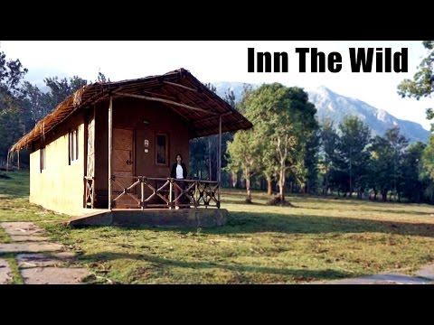 Mudumalai National Park - Inn The Wild - Masinagudi REVIEW | Travel India