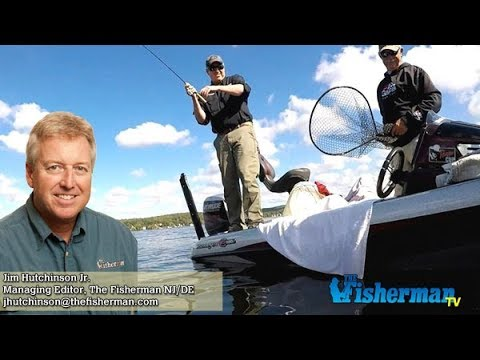 October 5 2017 new jersey delaware bay fishing report for Delaware bay fishing report