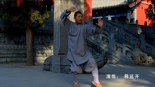 SHAOLIN SHI YANKAI LUOHAN QUAN Er Lu 2011
