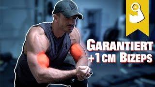 Bizeps Workout Komplettes Training für Muskelaufbau