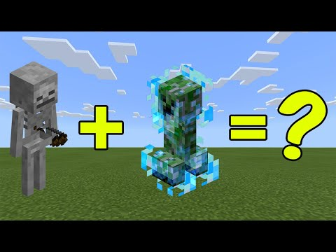 I Combined A Skeleton And A Charged Creeper In Minecraft - Here's WHAT Happened...