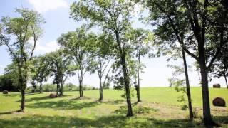 Wartrace Creek Farm : Land for Sale in Middle TN near Nashville