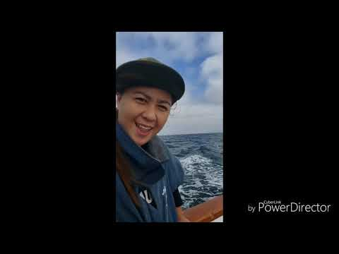 """Sports Fishing In San Diego Full Day At  The """"Grande"""" (Boat)"""