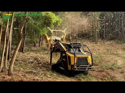 Repeat ASV RT120F + Diamond Mowers forestry disk mulcher in