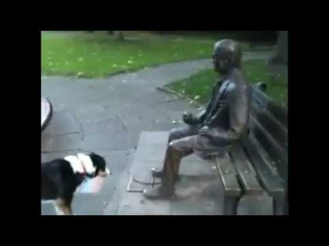 So cute - dog wants a statue to throw him the stick