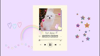 NCT soft study chill playlist [all units] ˚✧ ┊ ⇄ ◁◁ II ▷▷ ↻ ┊