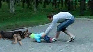 Отцы защищают детей - ottsy zashchishchayut detey