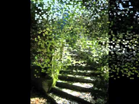 jardines de la fonte baixa ii antiguedades youtube