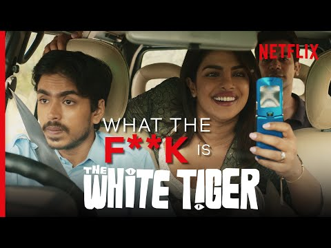 WTF is... The White Tiger? | Netflix