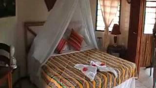 Five Sisters Lodge | Mountain Pine Ridge, Belize with Latin Odyssey