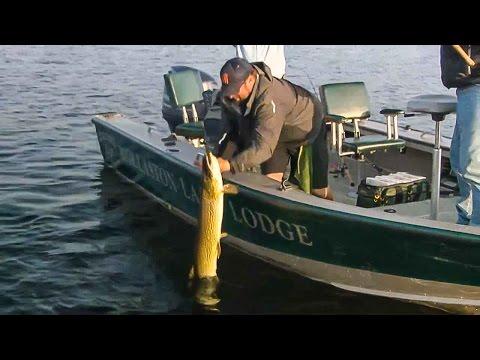EXPLOSIVE Gator Pike Fishing at Wollaston Lake Lodge