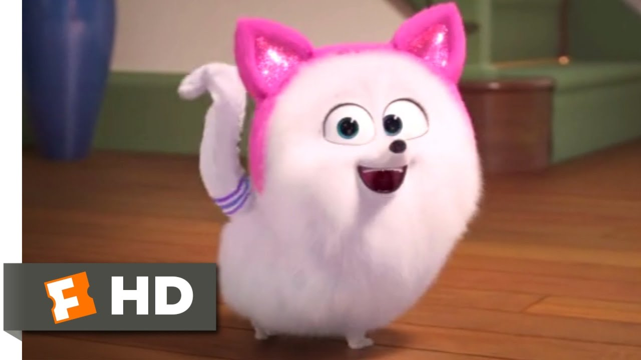 Download The Secret Life of Pets 2 - Cat Lessons Scene (4/10) | Movieclips
