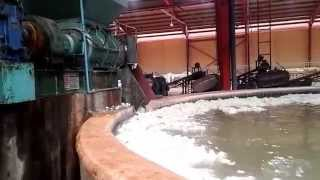production of natural rubber latex part 4