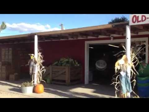Real Organic Farm Fallon Nevada part 1