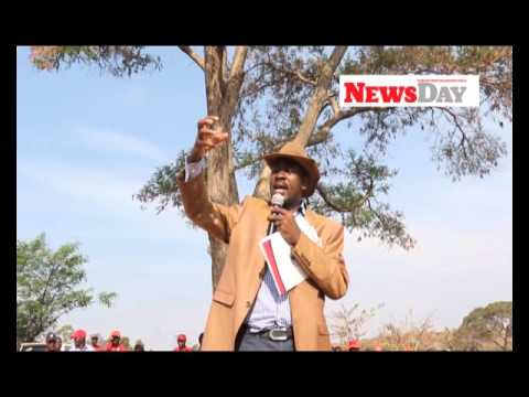 Video: Tsvangirai seeing shadows- Chamisa - NewsDay Zimbabwe