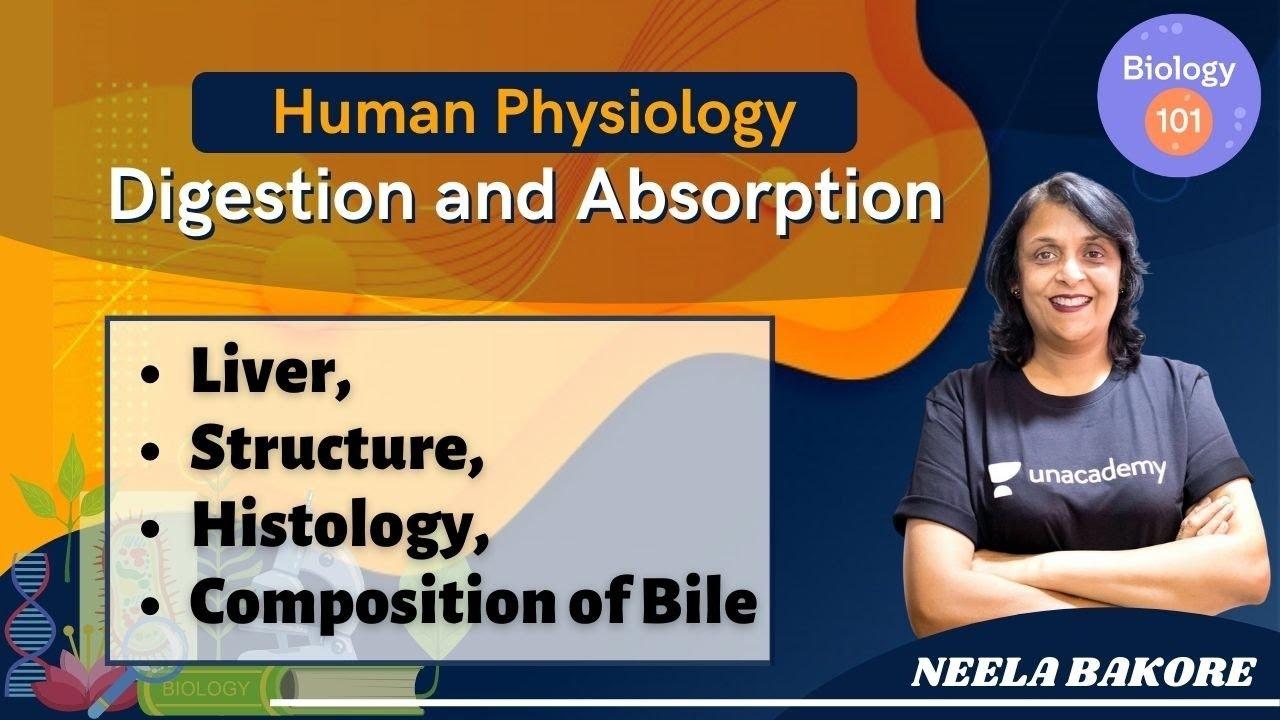 Human Physiology - Digestion and Absorption | Part-6 | NEET Biology | NEET UG | Neela Bakore