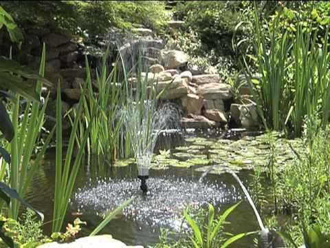 Ponds Watergardens Waterfalls Chapter 6 Equipment Youtube