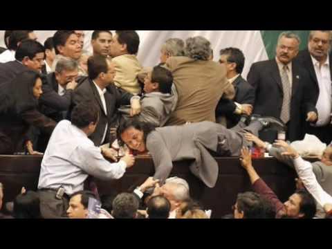 pelea camara de diputados argentina warez