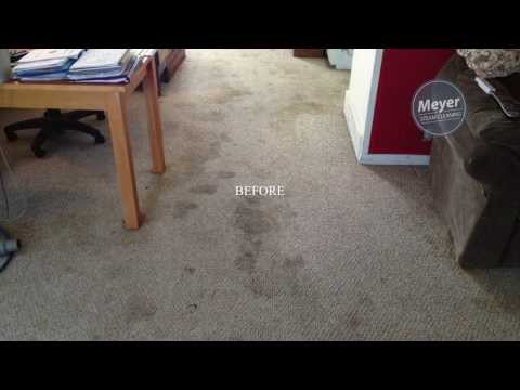 Before & After Photos | Carpet Cleaning Madison WI
