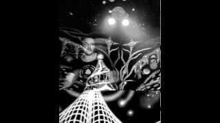 GNAÏA - Pychedelic exp ( Triskel festival Quebec 2014)