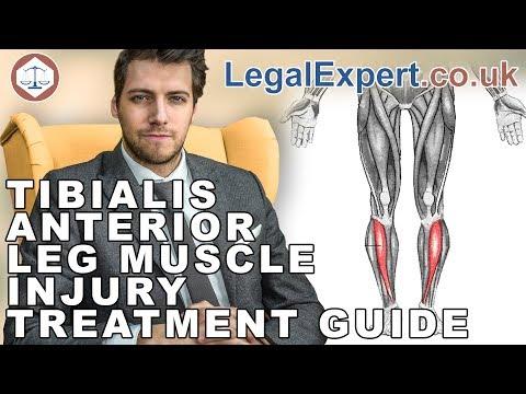 Tibialis Anterior Leg Muscle Injury Treatment Guide ( 2019 ) UK
